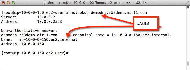 Voila! Your names instead of Amazon's for internal VPC resolution